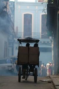 Dawn Rickshaw