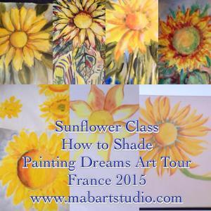 sunflowerclass-howtoshade