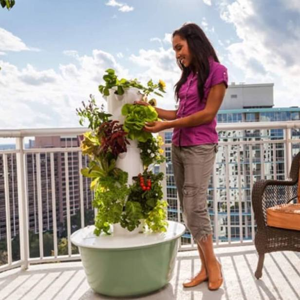 Tower Garden so you can grow your own food all year!